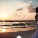 Paul Allen Events & Wedding Services