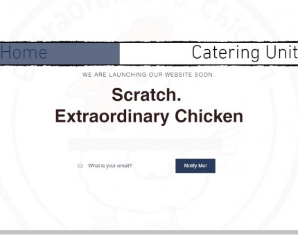 Scratch Chicken