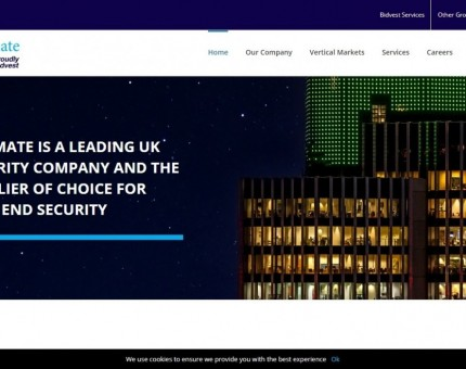 Ultimate Security Services LTD