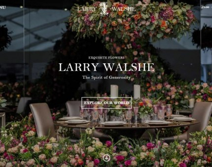 Larry Walshe Ltd