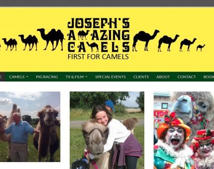 Joseph's Amazing Camels