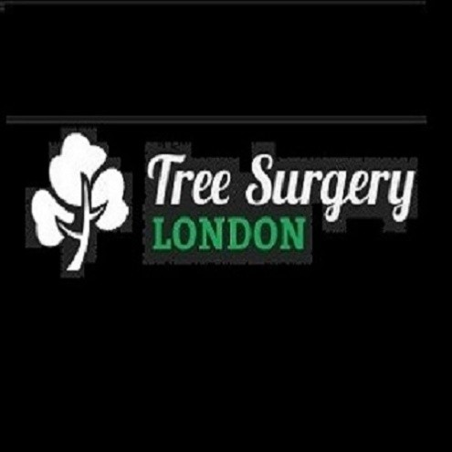 Tree Surgery London
